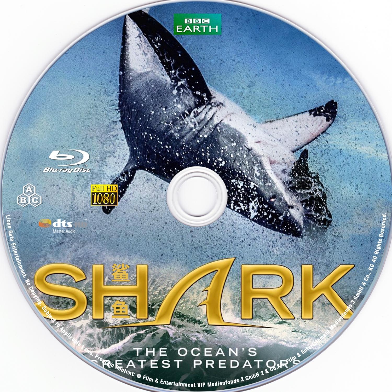 鲨鱼/碧海狂鲨(豆瓣评分高达变态的9.5分 纪录片