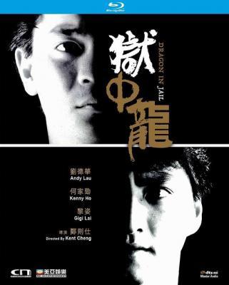 狱中龙 (1990) 豆瓣6.8 J(刘德华)