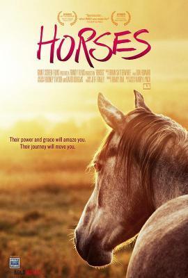 牛仔冒险:骑马环游世界-乘骑文化(2006)