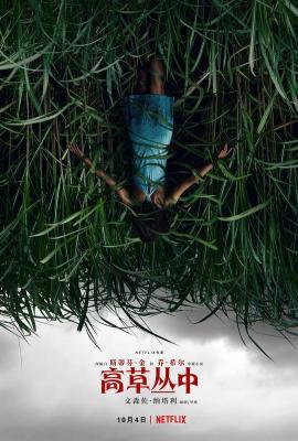 高草丛中/高草魅声/草丛失魂 豆瓣6.3 IN THE TALL GRASS (2019)