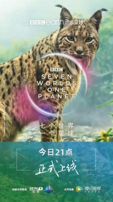 BD50-2D 七个世界,一个星球 全景声 2019 评分9.8 3碟装